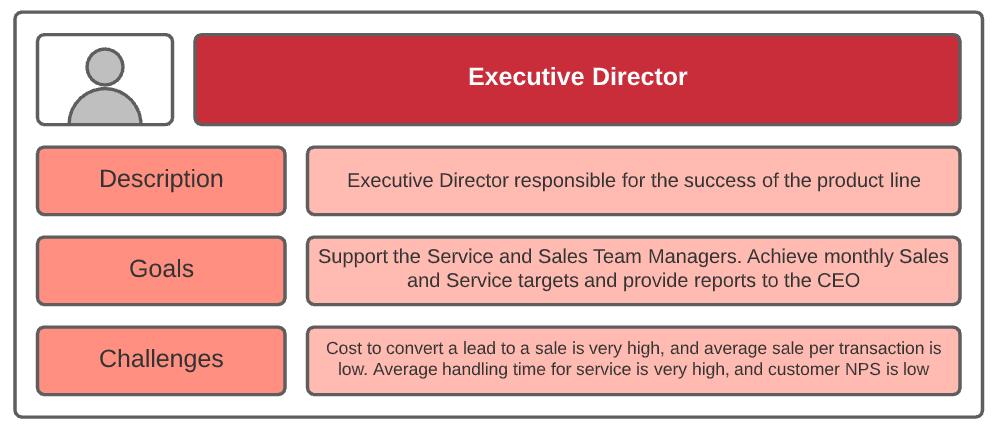 salesforce product backlog persona executive director